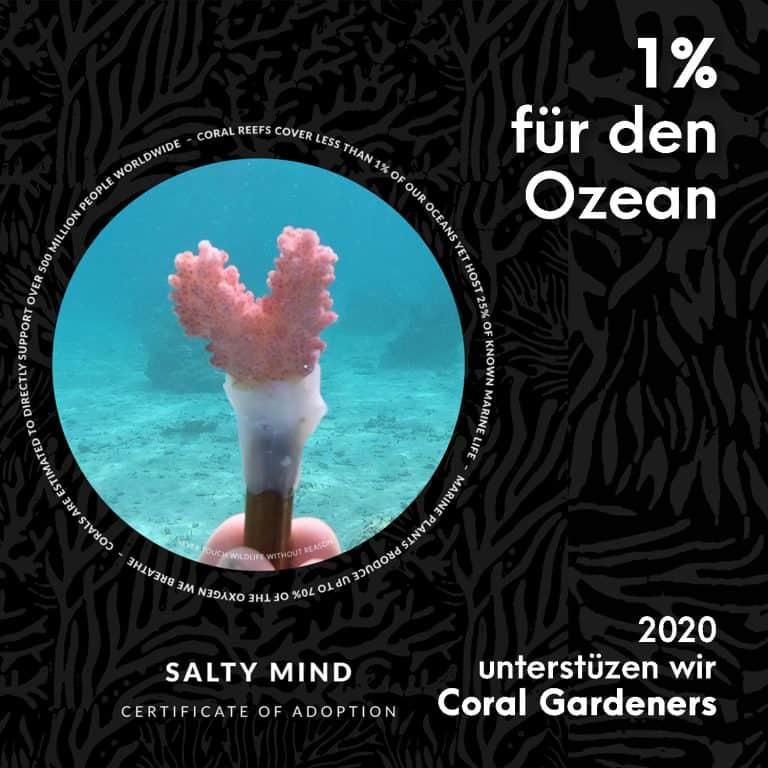 Nachhaltigkeit Spenden Korallen pflanzen