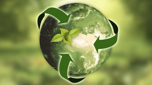 nachhaltige Meeres Projekte