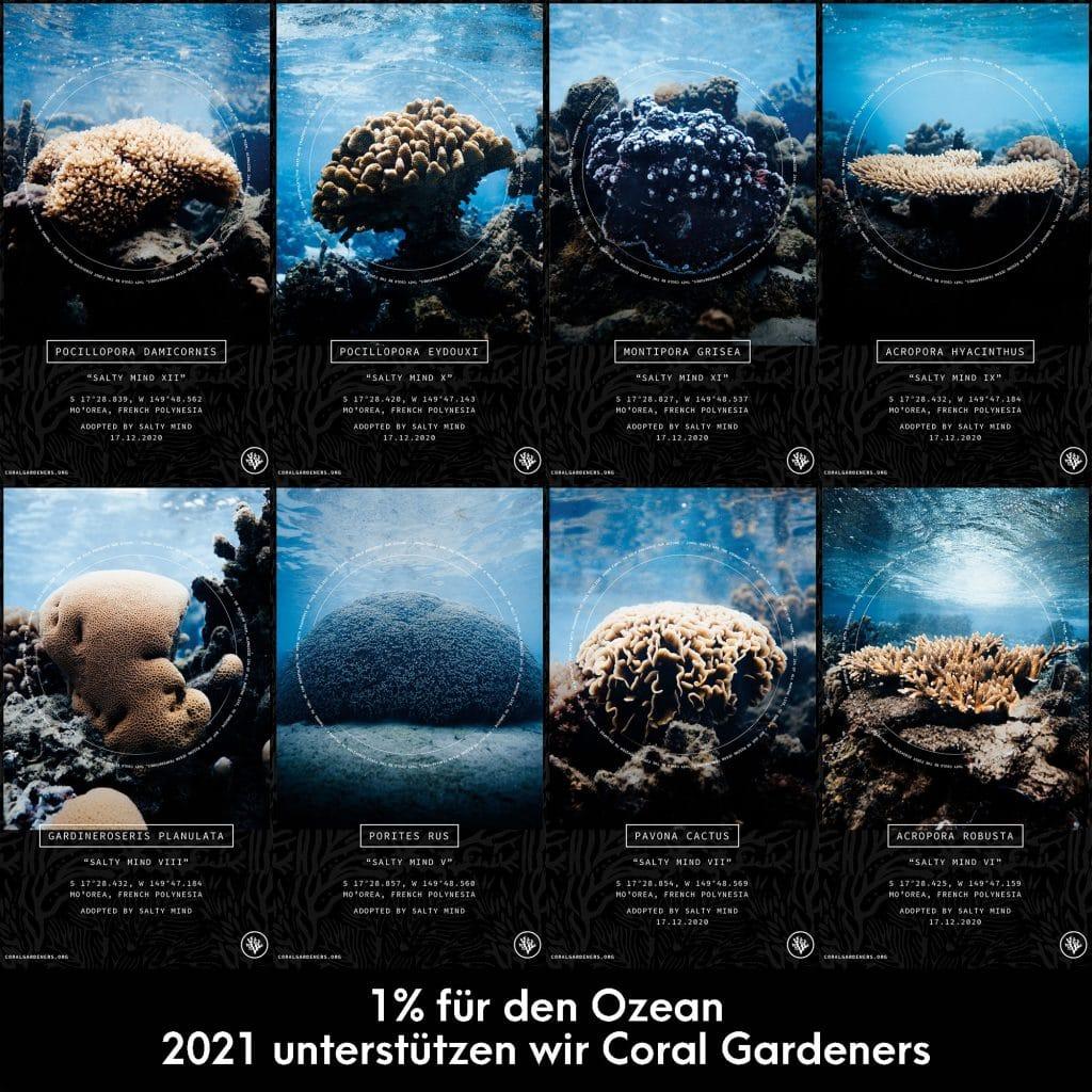 Coral Gardeners 2021